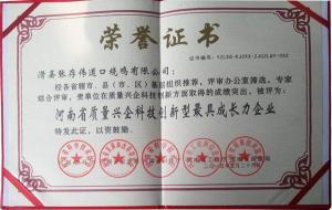 河南省质量兴企科技创新更具成长力企业